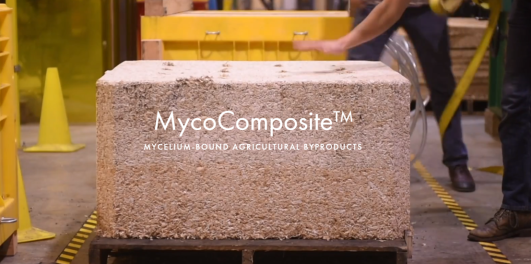 mycocomposite screenshot